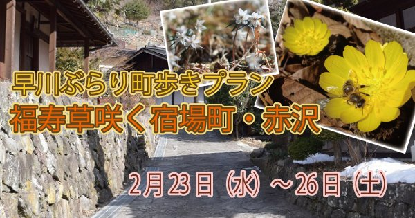 【2/23~25】早川ぶらり町あるきプラン 福寿草咲く江戸の宿場町・赤沢
