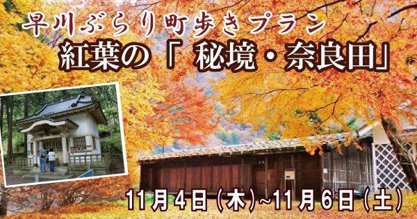 【11/4~11/6】早川ぶらり町あるきプラン 紅葉の秘境・奈良田